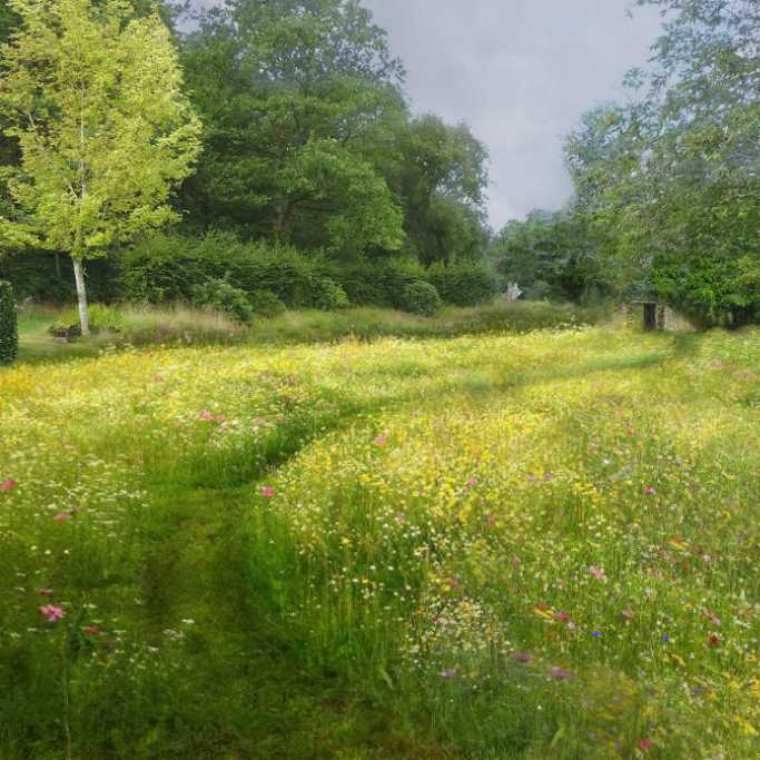 Next lawn to become a meadow...
