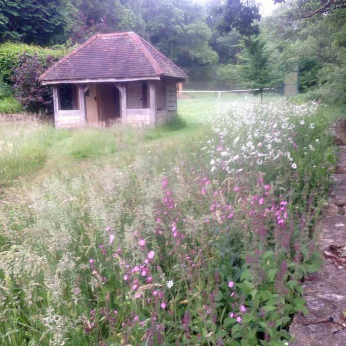 Tennis hut meadow